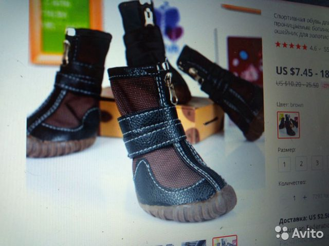 Ботинки для лабрадора 89515899554 купить 5