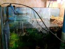 Аквариум с красноухой черепахой