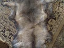 Голова лисы,шкуры оленьи