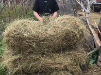 Продам тюкованное сено из разнотравия