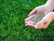 Семена для газона Оптом